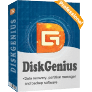 DiskGenius Professional 5.4.2.1239 Crack